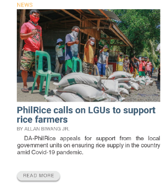 PhilRice calls on LGUs to support rice farmers