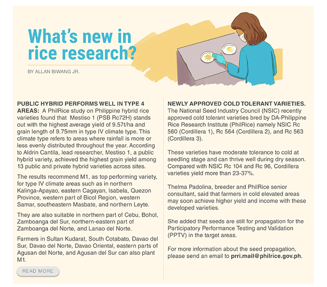 What's new in rice research