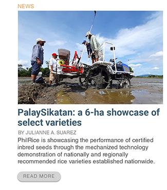 palaysikatan-a-6-ha-showcase-of-select-varieties