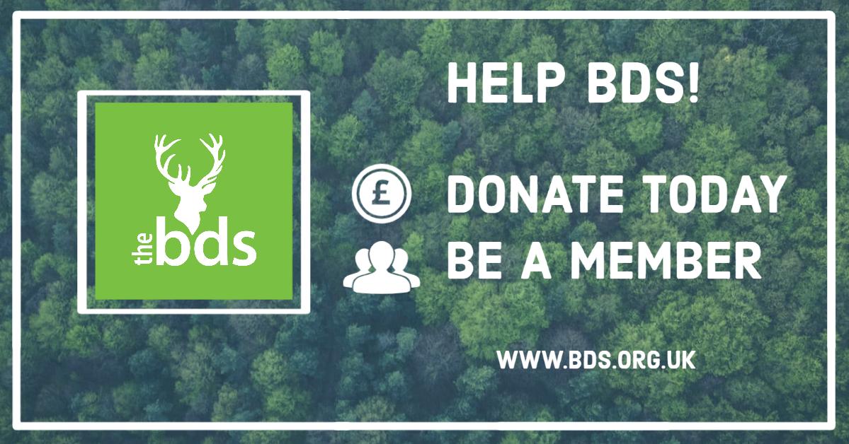 help bds