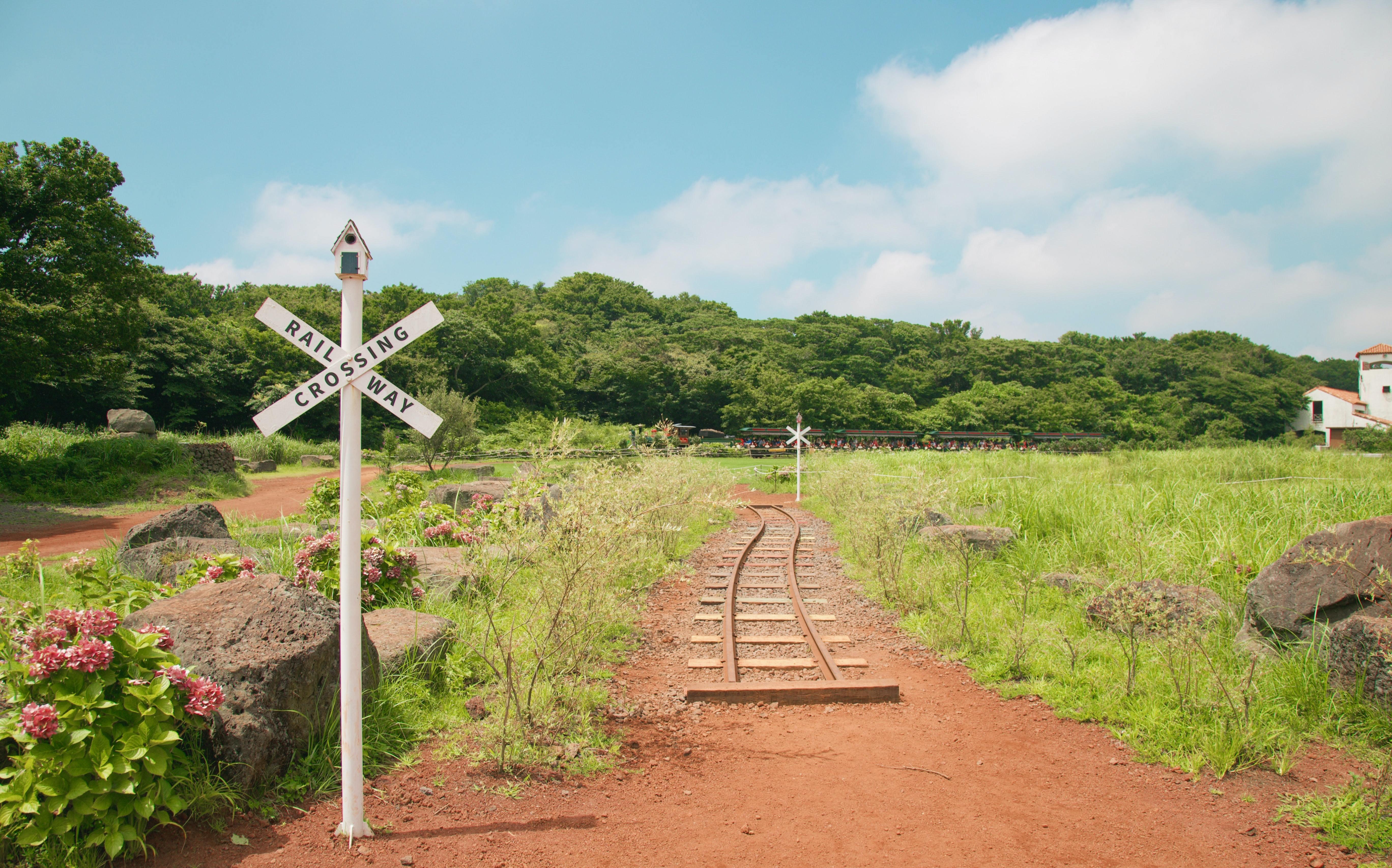 Railroad Crossroads