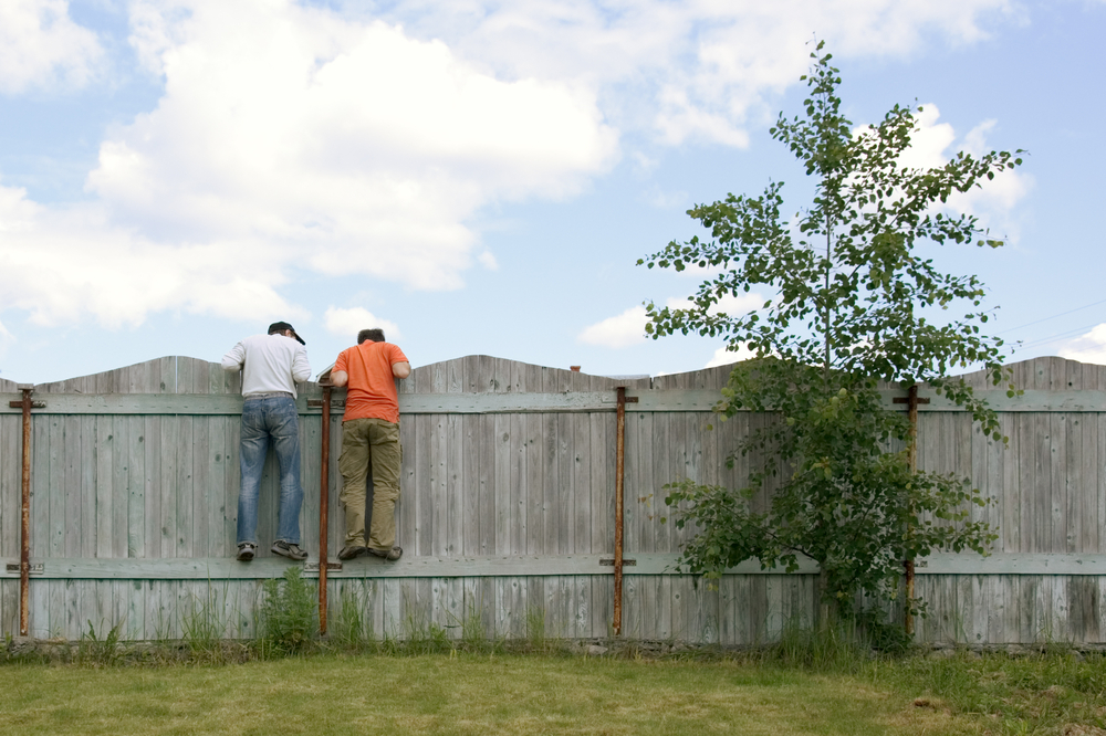Two Men Peeping Over Fence