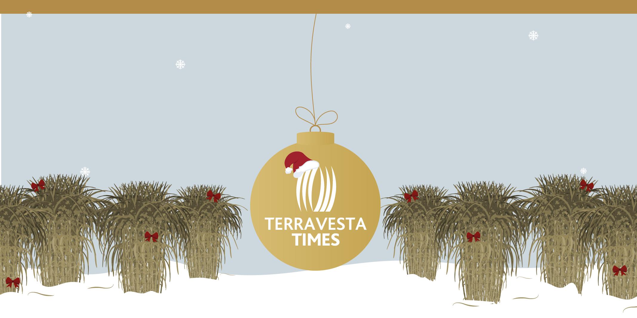 Terravesta Times December
