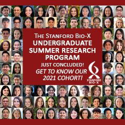 Bio-X Undergraduate Summer Research