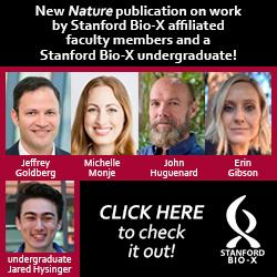 Bio-X faculty and undergraduates