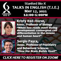 Bio-X Talks in English May 2021
