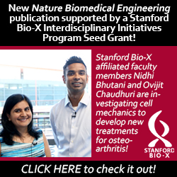 Stanford Bio-X Seed Grant