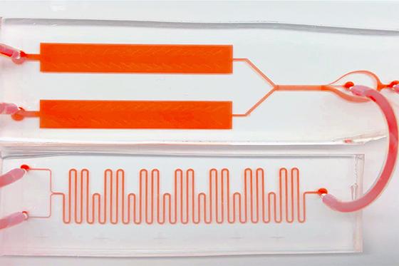 Proteinator blood test