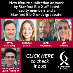 Bio-X faculty and undergraduate