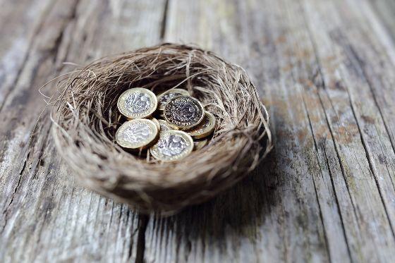 Nest egg illustration