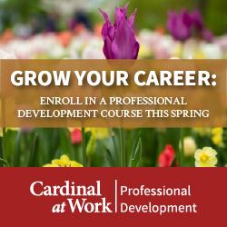 Spring Professional Development