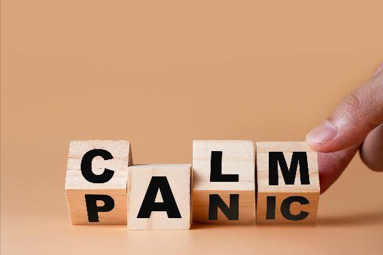 Illustration of calm and panic