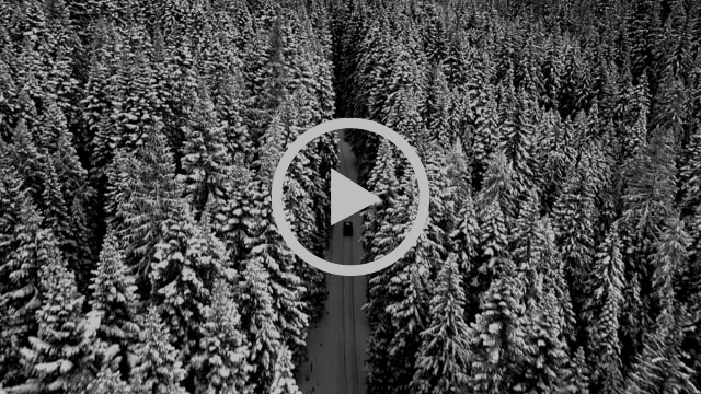 Tranquility. A black and white video assemblage capturing the look and feel of Primare