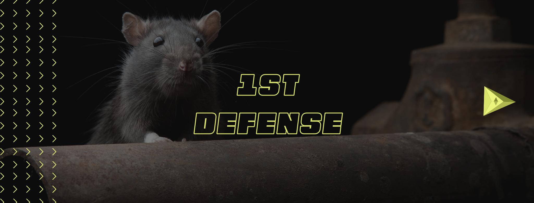 1st defense banner