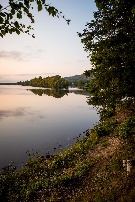 River Umeälven in the evening sun Photo: LOLA AKINMADE AKERSTROM / Kvarken Destinations Contentbank