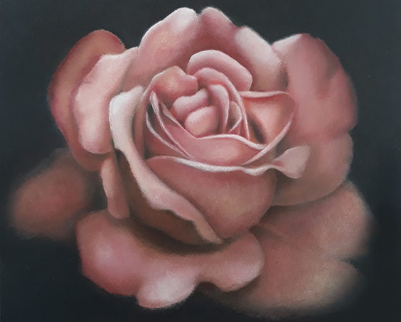 'Roos', olieverf/paneel, 20x16 cm