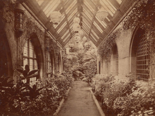 Milner Field conservatory (photograph from studio of Albert Sachs)