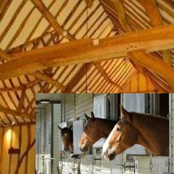 Sefton's Barn and the Horse Trust stables