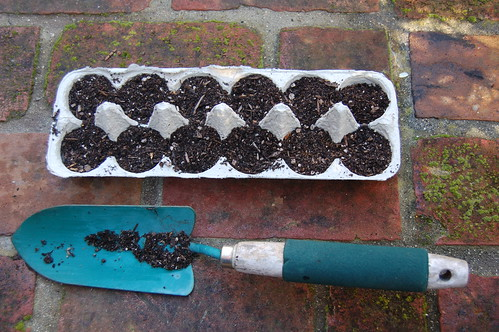 Seed Starter Gardening