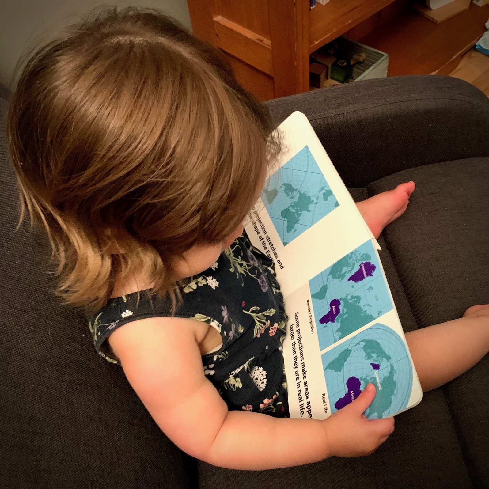 Map Projections for Babies by Dan Ford