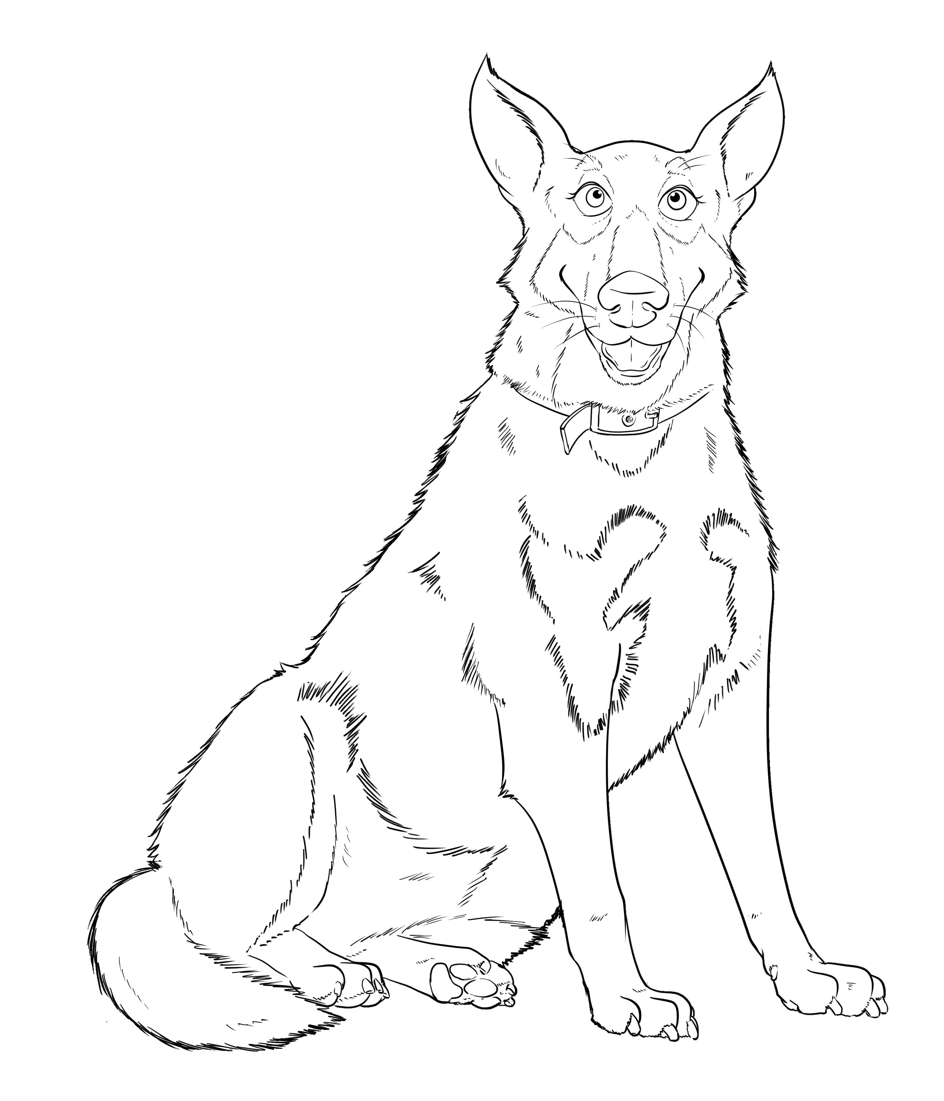 Smily, happy German shepherd dog