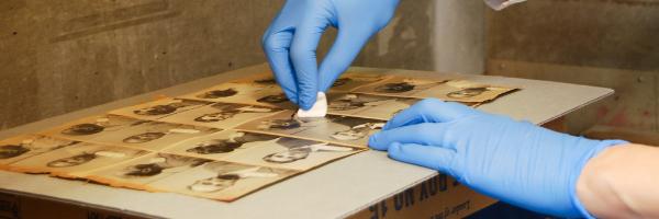 archivist preserving photos