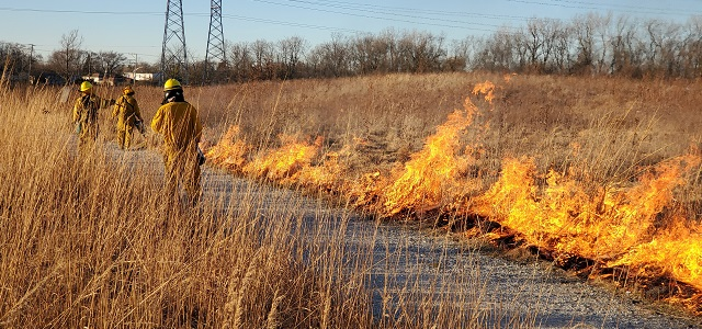 Burn crews performed prescribed burning in the Forest Preserves