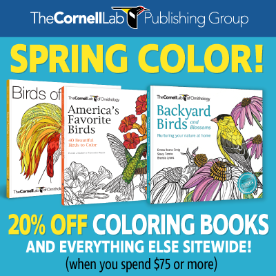 bird coloring books and ad for spring 20% off sale