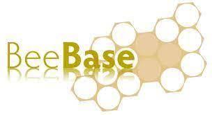 Varroa Reporting on BeeBase