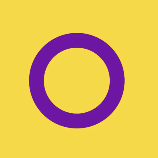 intersex pride flag