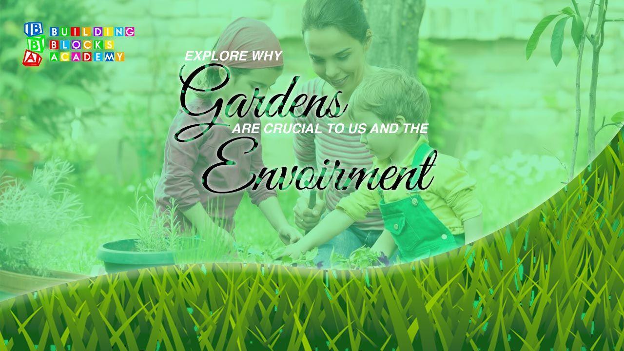 Gardens & Environment - Building Blocks Academy