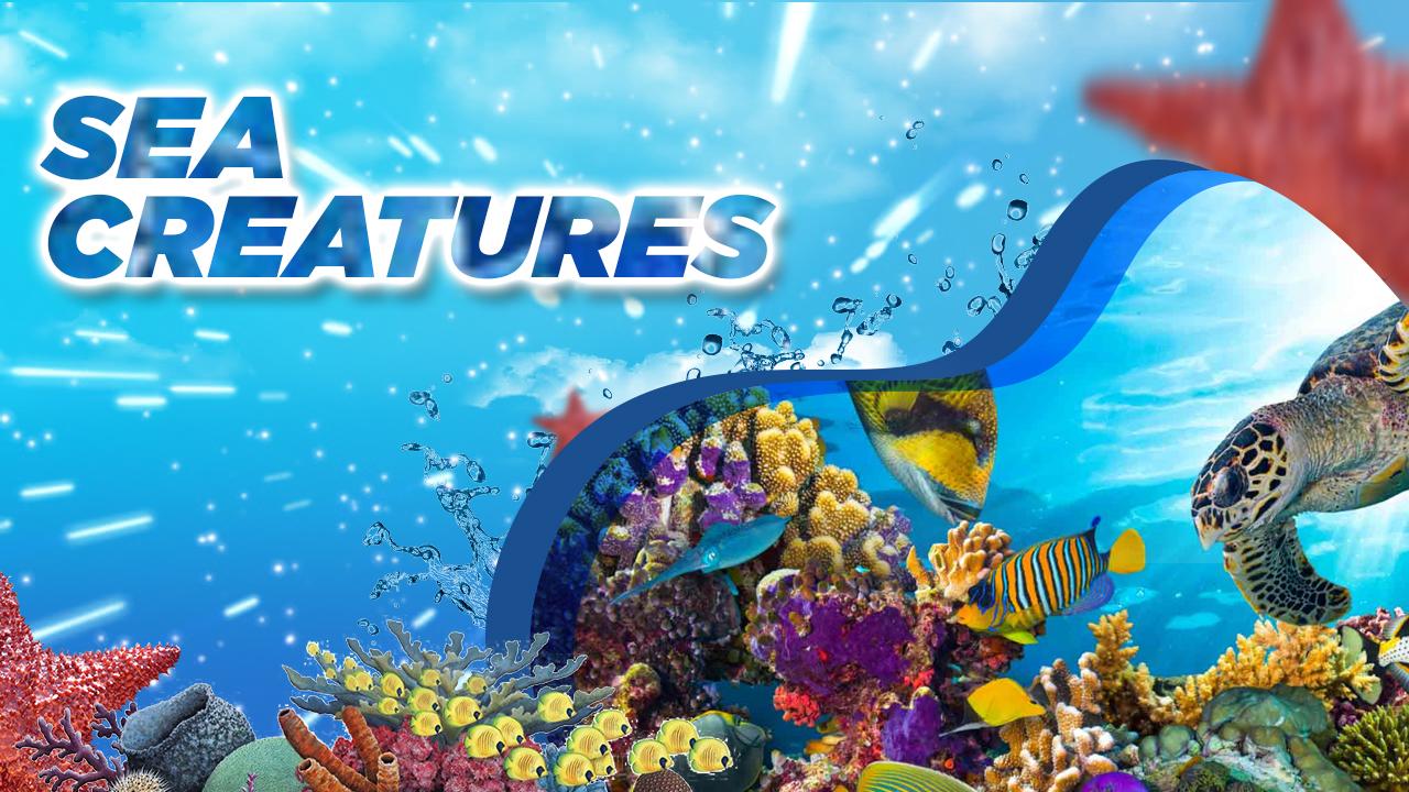 Sea Creatures - curriculum - Building Blocks Academy