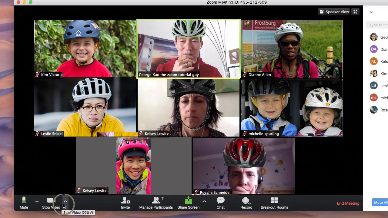 Zoom meeting with helmets