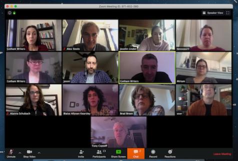 Zoom Web Meeting
