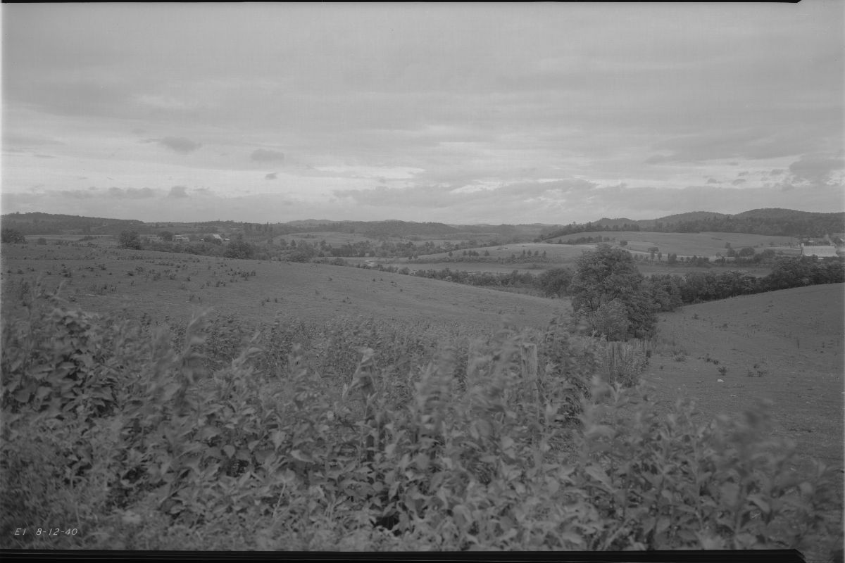 Black and white photograph of the Cherokee Dam Site, showing a landscape of a field with trees and brush