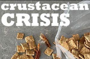Crustacean Crisis