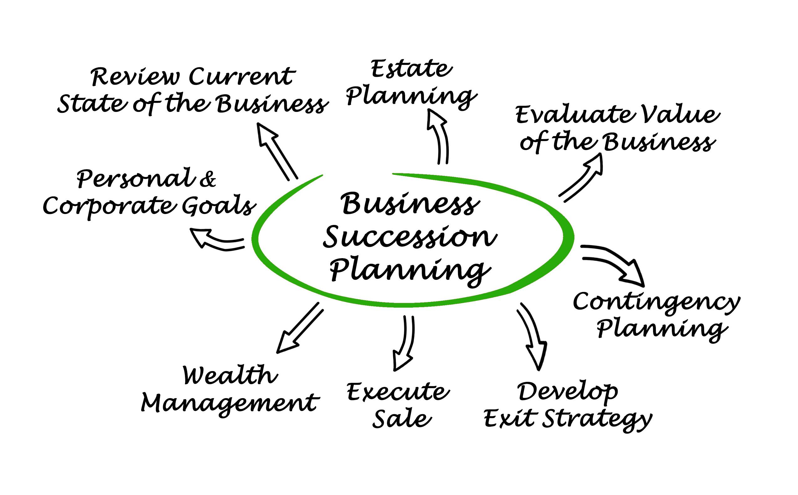 siness Succession Planning Venn Diagram