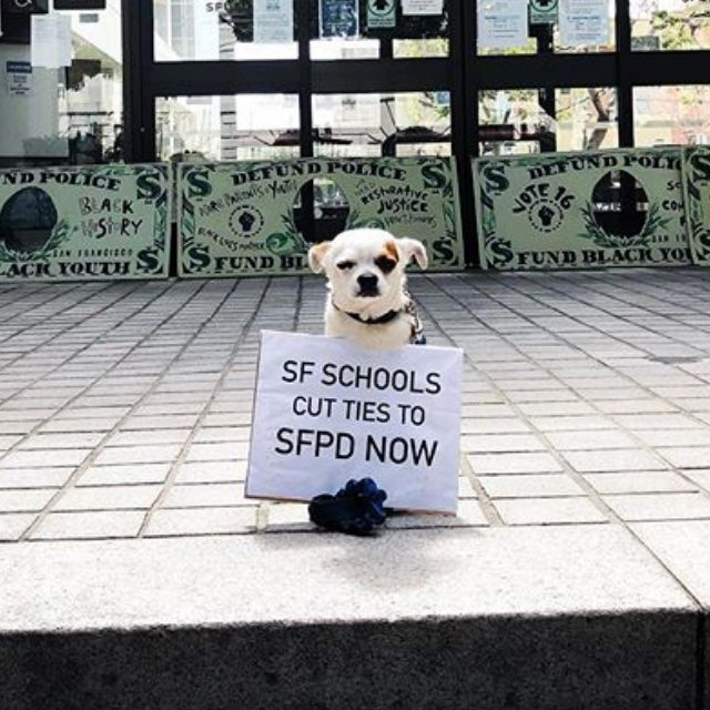 SF Schools Cut Ties to SFPD NOW