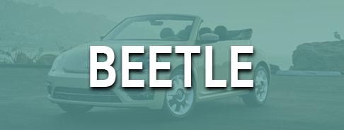 Shop Beetle