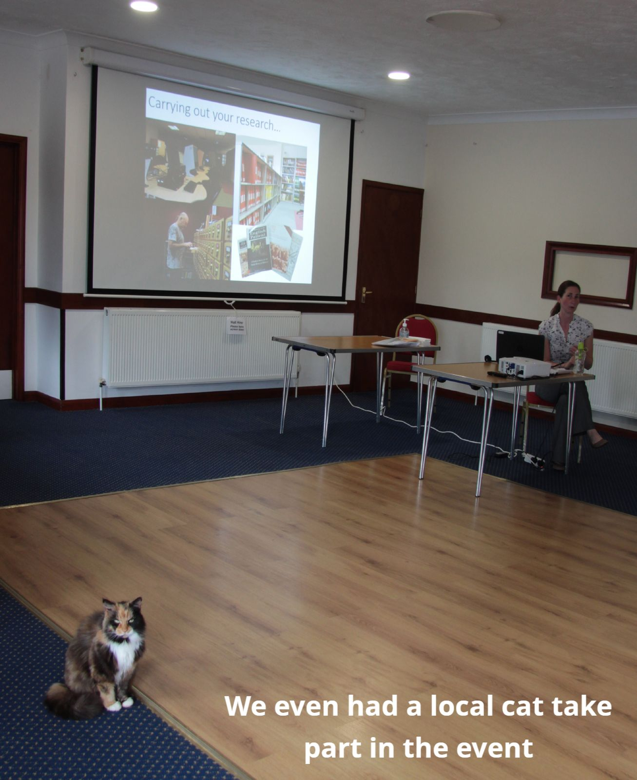 Cat sitting in front of a presentation slide