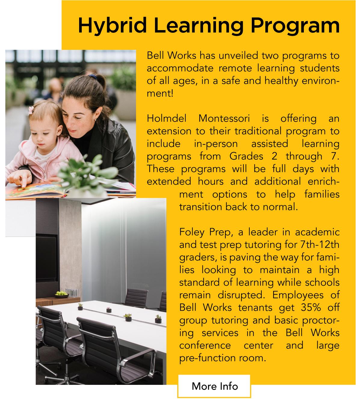 Hybrid Learning Program