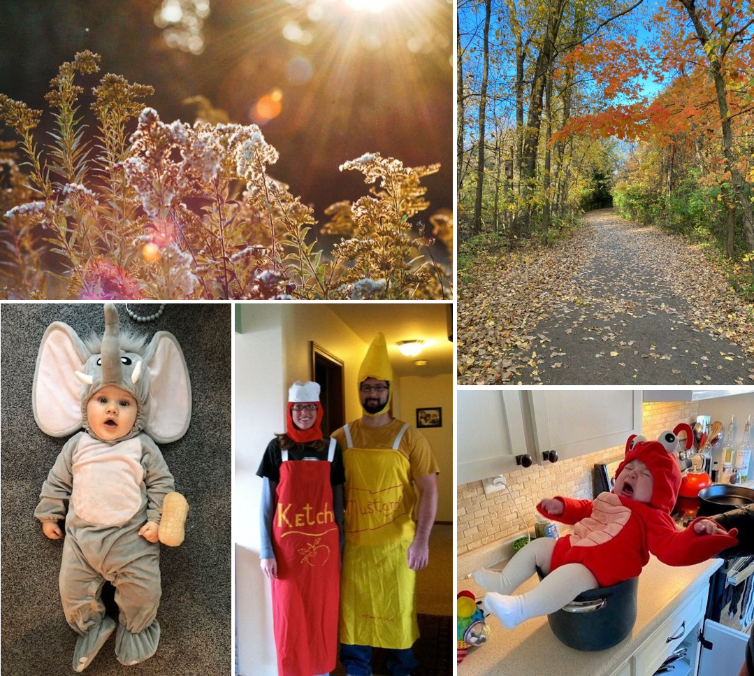 Photos from the Experience Starpower fall Padlets. Images include sun beams on fall plants, a view down a path covered in fall foliage, a baby dressed as an elephant, a couple dressed as ketchup and mustard, and a baby dressed as a lobster sitting in a pot.
