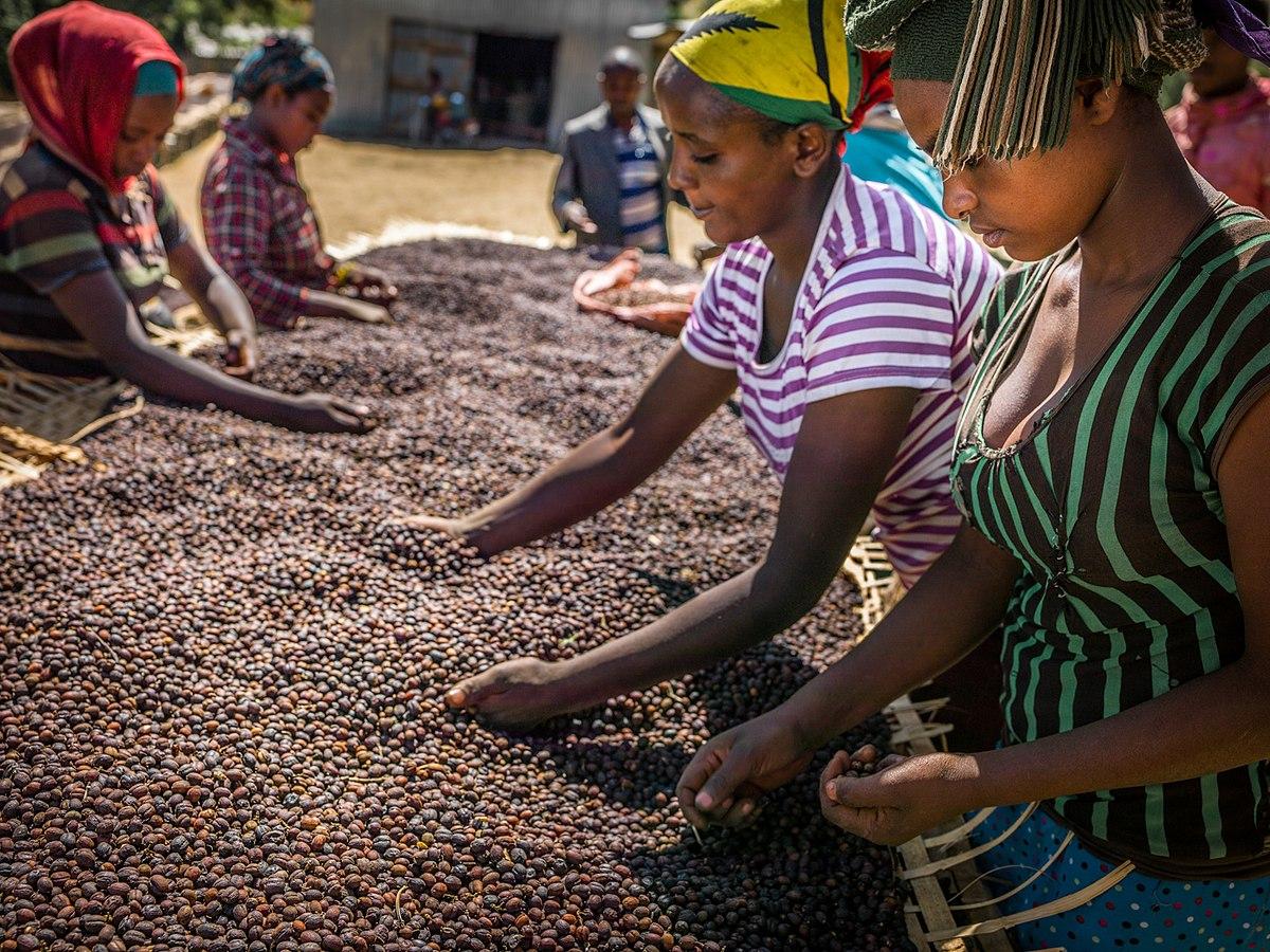 Happy International Coffee Day 2020