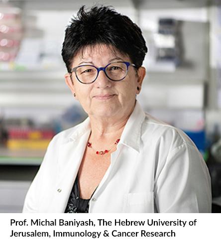 Prof. Michal Baniyash, The Hebrew University of Jerusalem, Immunology & Cancer Research
