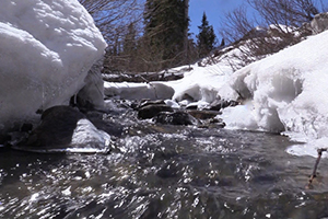 River flowing with snow around it.