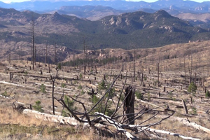 From Forests to Faucets with Denver Water
