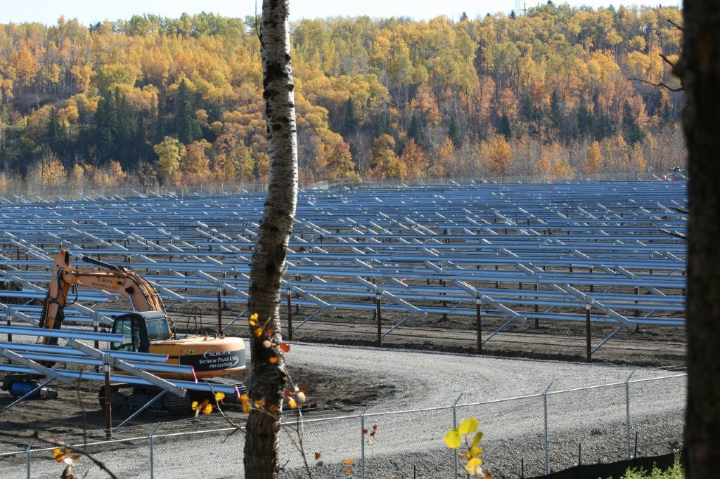 Racks for solar panels, surrounded by trees with yellow leaves