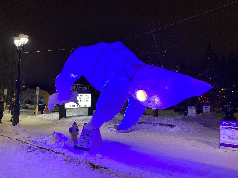 Is it a bird? A plane? Nope, it's a whale, which you can see at Borden Park Illuminated during this year's Deep Freeze: A Byzantine Winter Fête. (Arts on the Ave)