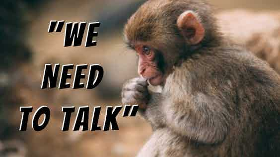 """Monkey in 'speakers pose' with the words:  """"We need to talk"""""""