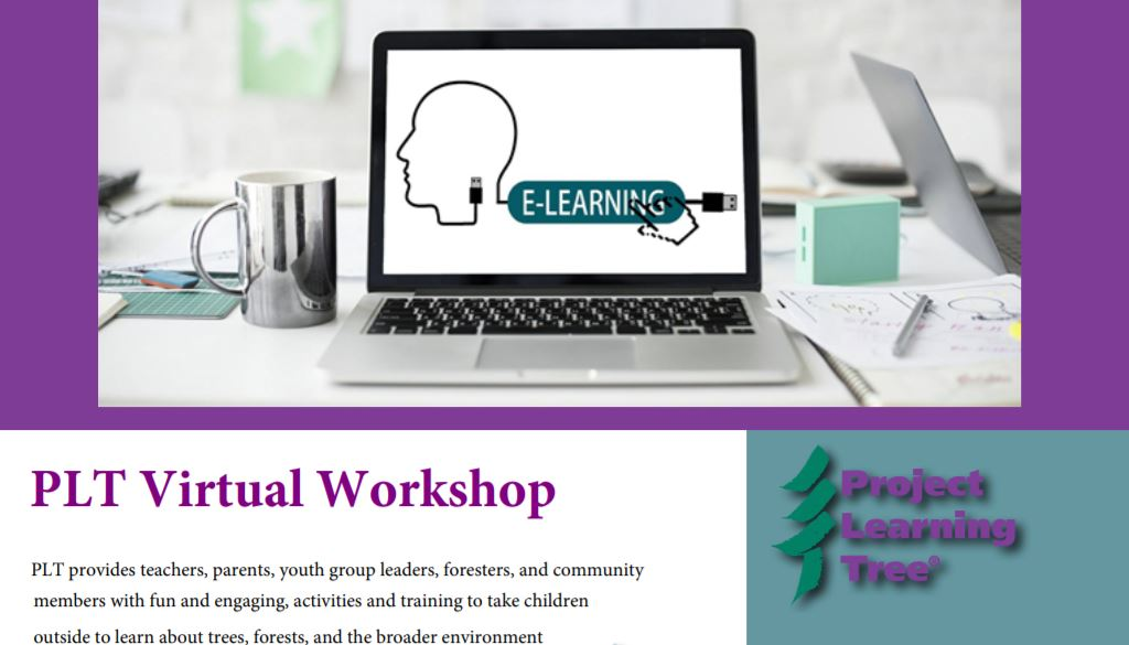 PLT Virtual Workshop